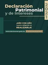 Declaración patrimonial y de intereses 2021